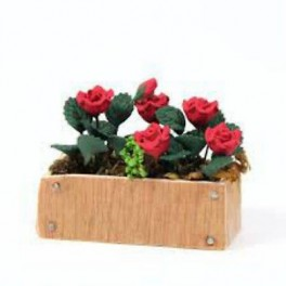Roses Window Box